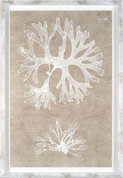 Picture of Nature Printed On Linen II