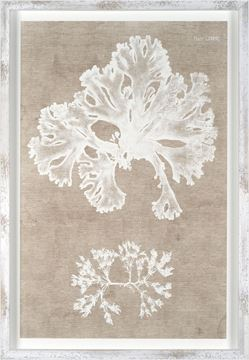 Picture of Nature Printed On Linen III