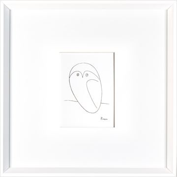 Picture of Picasso Owl  - White
