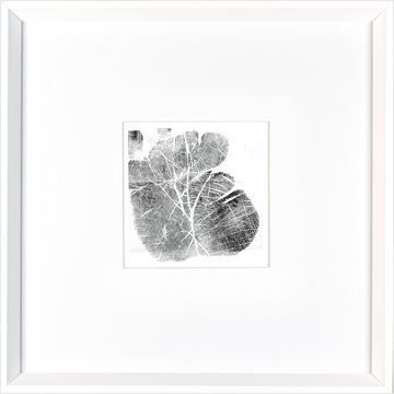 Picture of Palm Print  - White