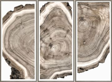 Picture of Live Edge Triptych