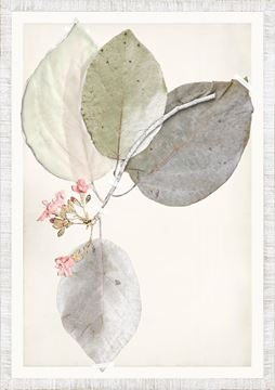 Picture of Ruche Flora I