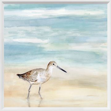 Picture of Speckled Willet I