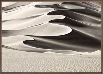 Picture of High Desert Dune - Large