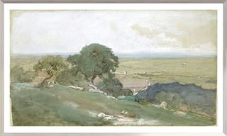 Picture of Olive Trees at Tivoli C. 1873