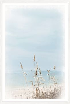 Picture of Dune Grass - Left
