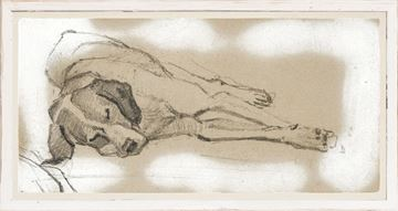 Picture of Study of a Sleeping Dog I - Small