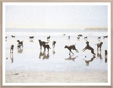 Picture of Dogs Day at the Beach - Large